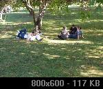 Lonjsko polje 2! 4AB80961-4069-E143-96AF-D80CD5AA5989_thumb